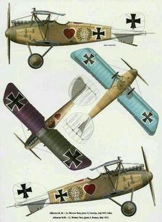 Albatros DV a  of Lt. Werner Voss
