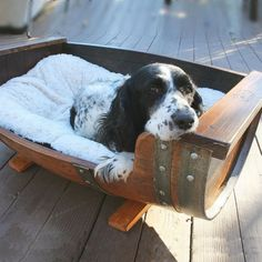 Reclaimed Wine Barrel Dog Bed - for Springer Spaniels, of course! Wine Barrel Dog Bed, Barrel Dog House, Barrel Bar, Wine Barrel Furniture, Barrel Projects, Matou, Pet Beds, Dog Accessories, Beautiful Dogs
