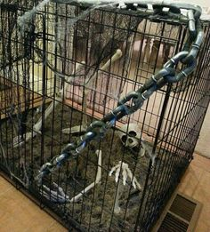 Easy #diy #Halloween #cage #decoration #(using #a #dog #crate)–literally #the #easiest #thing #ever #with #maximum #creep #value Halloween Skeleton Decorations, Halloween Items, Dog Halloween, Halloween Projects, Halloween Party Decor, Spooky Decor, Halloween Celebration, Halloween 2019, Halloween Horror