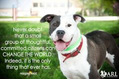 Change the world...end BSL