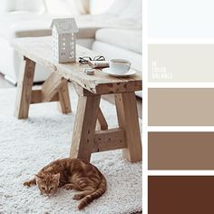 Color Palette - shades of orange and brown Scheme Color, Brown Color Schemes, House Color Schemes, Colour Pallette, Bedroom Color Schemes, Bedroom Paint Colors, House Colors, Paint Color Palettes, Brown Color Palettes
