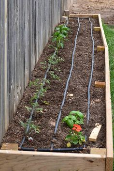 How to Make Square Foot Gardening Soil Mix in Real Time good tip