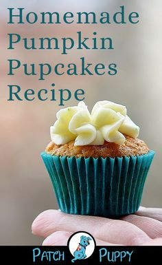This Homemade Pumpkin Pupcakes Recipe will make you Top Dog with your pups! Give them a try and tell us what you think. Cupcakes For Dogs Recipe, Dog Cake Recipes, Easy Dog Treat Recipes, Dog Cupcakes, Dog Biscuit Recipes, Healthy Dog Treats, Dog Cake Recipe Pumpkin, Dog Pumpkin, Pupcake Recipe