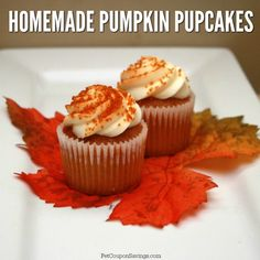 That's right, these pretty pumpkin cupcakes are made especially for dogs! Your canine will love these Homemade Pumpkin Pupcakes. #homemadedogtreats #pumpkin #pupcakesfordogs