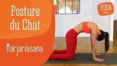 4 yoga positions for better digestion Yoga Poses For Two, Cool Yoga Poses, Yoga Poses For Beginners, Zen Yoga, Yoga Flow, Yoga Meditation, Yoga Video, Bedtime Yoga, Best Abs