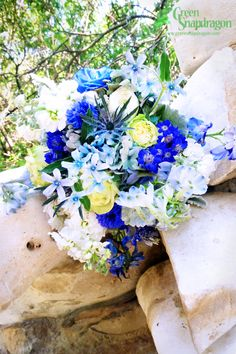 Bride's blue bouquet with green beauty roses, green tea roses, hydrangea, stock, delphinium, dusty miller, ranunculus, sea thistle, tweedia, cineraria, cornflowers, blue-dyed roses, texas bluebonnets. Wrapped in antique ribbon.
