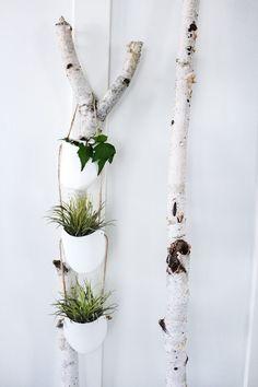 Leuk hè?! Deze plantenhangers. In een paar stappen heb je ze zelf gemaakt! #Kwantum #DIY #Tuin #Decoratie