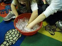 learning about how polar bears keep warm experiment