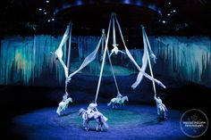 cavalia - Odysseo. Most amazing thing I've ever seen!! Definitely a Must see