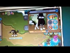 Please report this scammer on Animaljam.