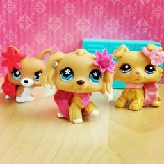 Photo of The Popular Girls for fans of Littlest Pet Shop. picture taken by LPShannah