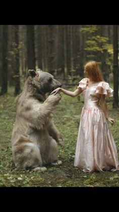 bear greets faerie princess