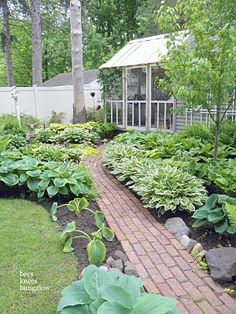 my dream hosta beds will look like this!