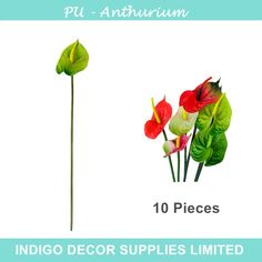 Find More Decorative Flowers & Wreaths Information about 10pcs/lot Green Anthurium Latex Calla Real Touch Wedding Display Flower Calla Artificial Flower Home Decorative Flower Wholesale,High Quality flower peel,China flower column Suppliers, Cheap flower 3d from Indigo Decor Supplies Limited on Aliexpress.com