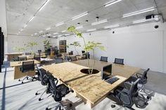 Gallery of Nakagawa Masashichi Shoten Omotesando Shop & Office / Schemata Architects - 3
