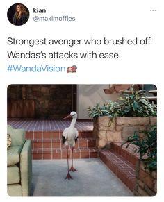 Strongest Avenger, Wanda And Vision, Avengers, Marvel, Home Decor, Homemade Home Decor, Interior Design, Home Interior Design, Decoration Home