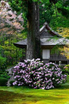Ohara Sanzen-in temple, Kyoto, Japan
