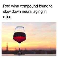 Just saying if you like red wine...New research suggests that a compound commonly found in red wine and some fruits may protect our neurons against the unwanted effects of aging.   The study suggests that the benefits may be equivalent to those of dieting and exercising.   They treated the mice with resveratrol for 1 year and noticed that the compound had the same beneficial effects as a good diet and exercise.   (published in the The Journals of Gerontology Series A: Biological Sciences..