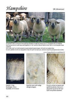 Wol in Nederland, Alles wat u wilt en moet weten over de woldragende dieren die in Nederland gehouden worden. Schaap - Alpaca - Angorageit - Angora/Satijn konijn - Kameel