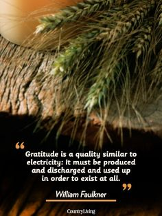 """""""Gratitude is a quality similar to electricity: It must be produced and discharged and used up in order to exist at all."""""""