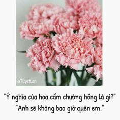 Flowers Nature, Colorful Flowers, Beautiful Flowers, Manga Love, Anime Love, Caste Heaven, Kite Quotes, Flower Meanings, Language Of Flowers