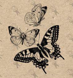 Kraft, mail art etc hq by unoprint on etsy butterfly drawing, butter Butterfly Drawing, Butterfly Tattoo Designs, Vintage Butterfly Tattoo, Butterfly Wall Art, Simple Butterfly, Images Vintage, Vintage Art, Tattoo Drawings, Art Drawings
