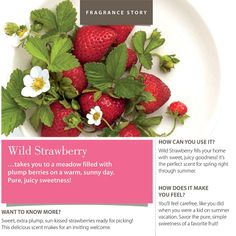 Wild Strawberry - takes you to a meadow filled with plump berries on a warm, sunny day. Pure, juicy sweetness!
