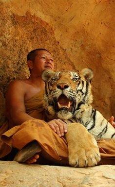 "Tiger Temple, ""Wat Pa Luangta Bua"", in the Saiyok District of Kanchanaburi Province, Thailand by Sebastian Kutzera"