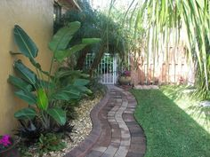 SOUTH FLA Rock Garden Landscape: Later painted the fence brown. See following pics;