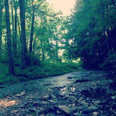 Rocks state park creek 2013