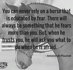 In love with a horse