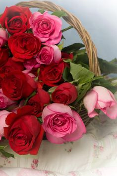 Bouquet of roses Beautiful Flowers Wallpapers, Beautiful Rose Flowers, Flowers For You, Beautiful Flower Arrangements, Love Rose, Flowers Nature, Rose Flower Wallpaper, Flower Quotes, Rose Bouquet