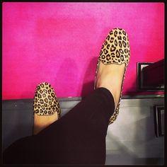 Pretty Loafer de oncinha MARA!!! #prettyballerinas #prettyballerinasbrasil #prettyloafers #animalprint #leopardprint #loafers #slippers