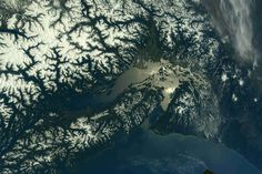 Celebrating National Park Week With a View of Mount Rainier