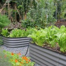 Nevell Kitchen Garden  (4)