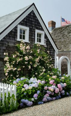 Beautiful coastal home with hydrangeas