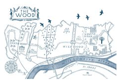'Wildwood' by Colin Meloy, illustrated by Carson Ellis