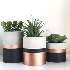 Stylish idea for coloring flower pots - Modern - Interior / Household - gartenbedarf Concrete Crafts, Concrete Planters, Planter Pots, Diy Flowers, Colorful Flowers, Flower Pots, Flower Ideas, Cactus Flower, Flower Pot Design