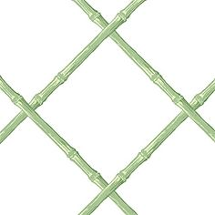 INTERNET ONLY--hallway BAMBOO, Green on White, TC8749, Collection Thibaut Classics from Thibaut