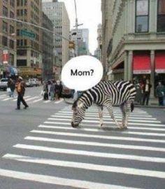 Mom???
