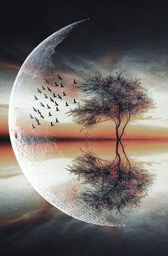 univer art, in moonlight at nature beauty Beautiful Nature Wallpaper, Beautiful Landscapes, Beautiful Moon Images, Beautiful Pictures, Moon Photography, Landscape Photography, Planets Wallpaper, Galaxy Art, Scenery Wallpaper