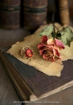 Still Life With Old Books, Dried Rose And Big Ring Greeting Card by Jaroslaw Blaminsky Still Life Photography, Book Photography, Creative Photography, Old Books, Vintage Books, Vintage Photos, Book Flowers, Dried Flowers, Autumn Rose