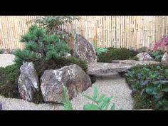 ▶ Tsuboniwa and lonesome pine