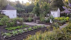 Image result for AMERICAN COLONIAL GARDENS