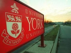 TORONTO — A former police officer who rose to a top executive position at York University masterminded two scams that defrauded the Toron. York University, Police Officer, Ontario, Toronto, My Life, Education, Construction, Magazine