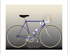 Roger De Vlaeminck's 1976 Paris-Roubaix Bike