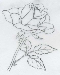 flower Archives - DRAWING ART & SKETHES