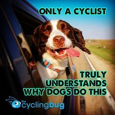 IT'S HARD BEING A CYCLIST WHEN... http://thecyclingbug.co.uk/bugfeed/fixie/b/weblog/archive/2014/08/15/its-hard-being-a-cyclist-when.aspx?utm_source=Pinterest&utm_medium=Pinterest%20Post&utm_campaign=ad     It's hard to shut us up when we're asked about the things that are great about cycling. But there's no getting away from it. Sometimes being a bike rider is just plain hard....  #thecyclingbug #cycling #bike