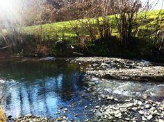 Tenemos otra huerta en Nava, donde tenemos árboles frutales para las mermeladas y también traemos el chorizo y el picadillo de alli. Este es el río que tenemos muy cerca de la huerta y casa.