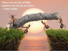 """""""alone we can do so little; together we can do so much."""""""